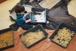 learning at poplars blossoms nursery toddler playing with pasta