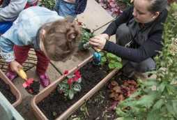 daycare garden activities at poplars nursery schools