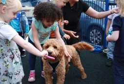why choose poplars day nurseries children playing with dog