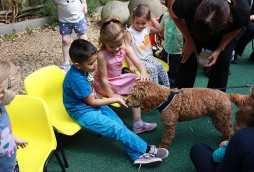 childcare activities at poplars day nurseries